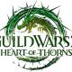 Guild Wars 2: Cámara en primera persona en camino