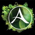 ArcheAge: Lanzamiento en China para 2015