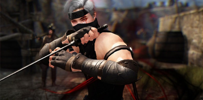 El Ninja y la Kunoichi llegan la semana que viene a Black Desert