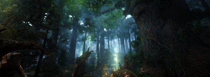 Black Desert Online está preparando su próxima expansión «Kamasylvia»